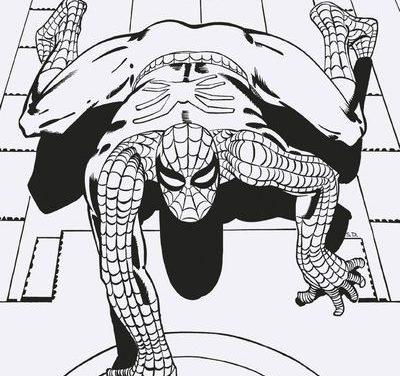 Amazing Spider-Man #800 (Ditko Remastered B&W Variant)