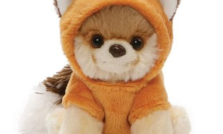 Boo the Dog Itty Bitty Boo Red Fox Plush #50