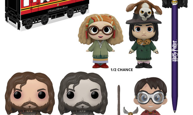 Funko Harry Potter Mystery Box – Exclusive