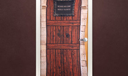 Harry Potter No Muggles Allowed Door Cover