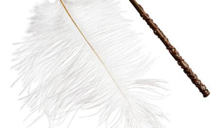 Harry Potter Wingardium Leviosa Floating Feather
