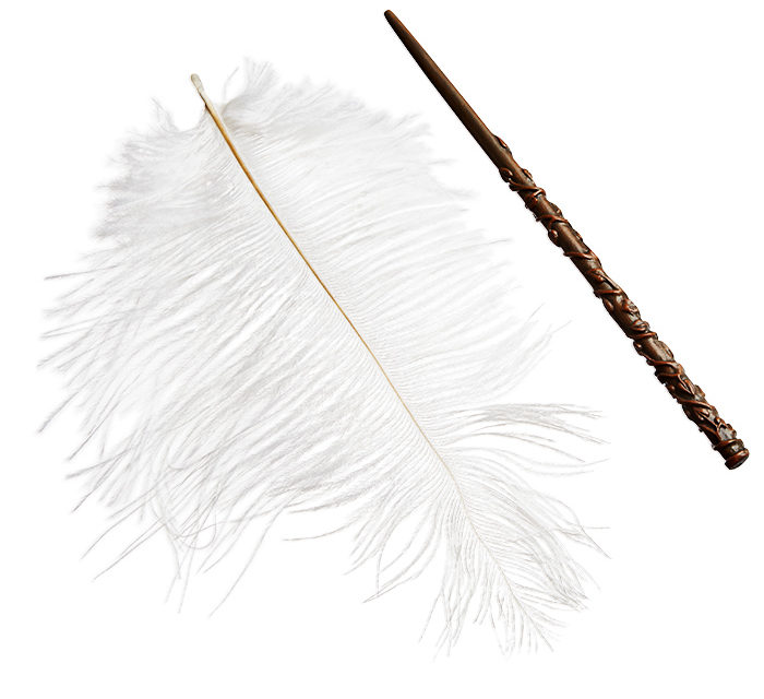 Harry Potter Wingardium Leviosa Floating Feather
